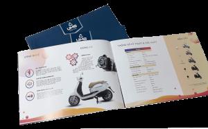 Thông tin in catalogue giá rẻ tphcm